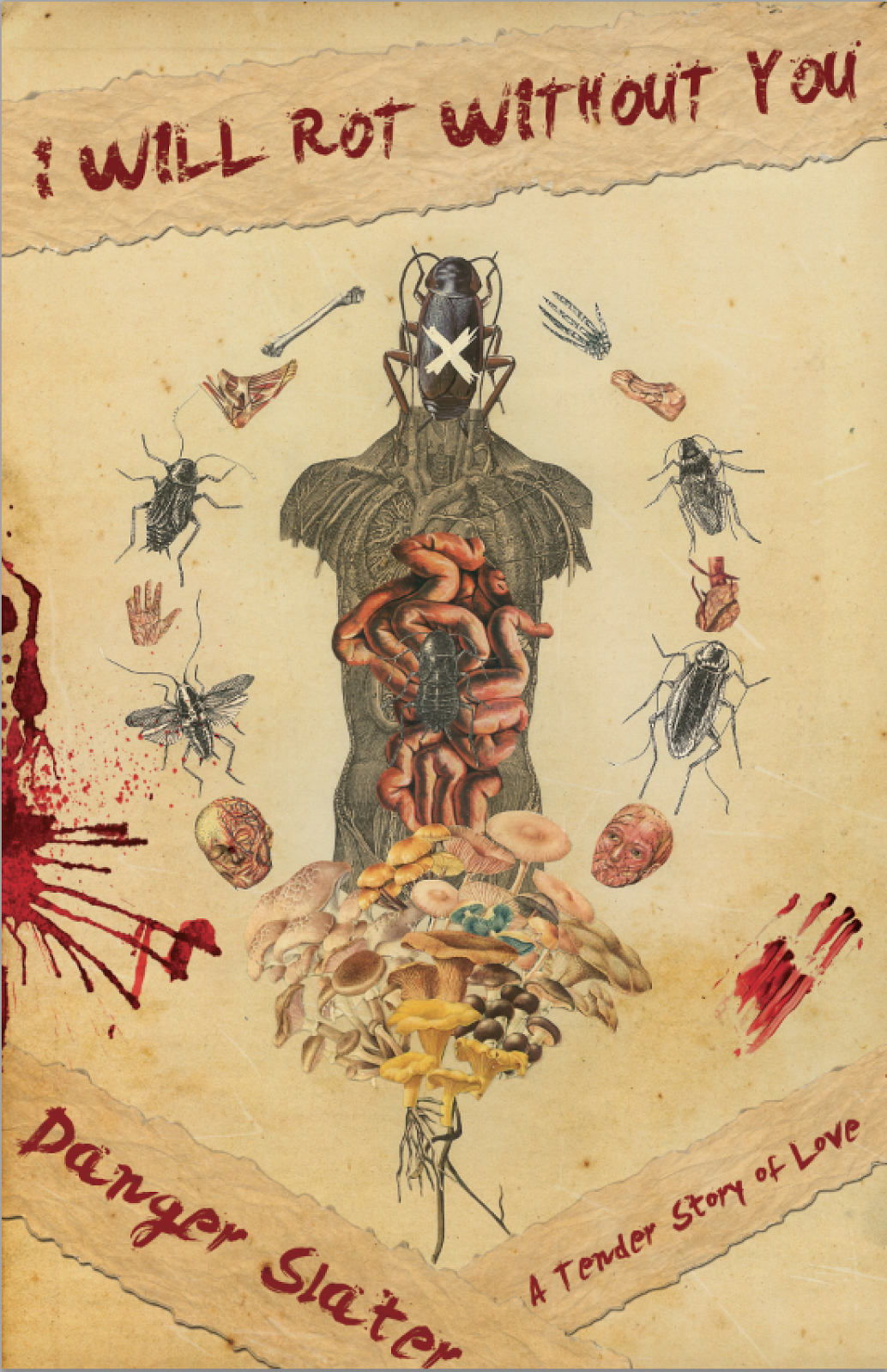 Review: I Will Rot Without You By Danger Slater (fungasm Press; 2015)
